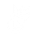 آموزشگاه موسیقی کیان