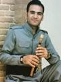 حامد پیرا