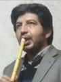 مهدی الطافی